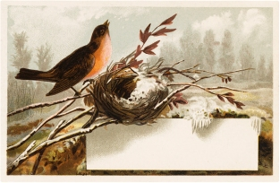 Vintage-Winter-Bird-Nest-Label-GraphicsFairy.jpg